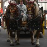 volksfest-pferde